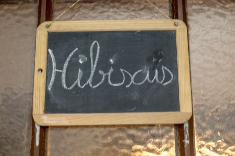 Appartement Hibiscus © Francis Manguy